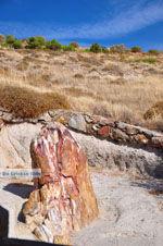 Petrified forest near Sigri | Lesbos Greece | Photo 45 - Photo JustGreece.com