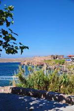 Sigri Lesbos | Greece | Greece  021 - Photo JustGreece.com