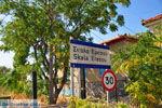 Eressos and Skala Eressos | Lesbos Greece | Photo 4 - Photo JustGreece.com