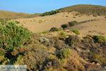 JustGreece.com Amothines woestijn near Katalakos Limnos (Lemnos)   Photo 18 - Foto van JustGreece.com