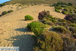 JustGreece.com Amothines woestijn near Katalakos Limnos (Lemnos) | Photo 20 - Foto van JustGreece.com