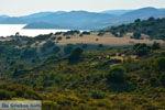 Near Gomati and woestijn Amothines Katalakos Limnos (Lemnos) Photo 2 - Photo JustGreece.com