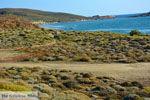 JustGreece.com Near Gomati and woestijn Amothines Katalakos Limnos (Lemnos) Photo 5 - Foto van JustGreece.com