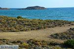 Near Gomati and woestijn Amothines Katalakos Limnos (Lemnos) Photo 6 - Photo JustGreece.com