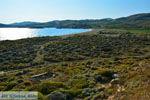 Near Gomati and woestijn Amothines Katalakos Limnos (Lemnos) Photo 9 - Photo JustGreece.com