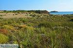 Near Gomati and woestijn Amothines Katalakos Limnos (Lemnos) Photo 15 - Photo JustGreece.com