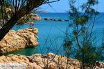beach Megalo Fanaraki near Moudros Limnos (Lemnos) | Photo 39 - Photo JustGreece.com
