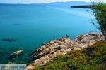 JustGreece.com beach Megalo Fanaraki near Moudros Limnos (Lemnos) | Photo 42 - Foto van JustGreece.com