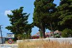 Platy Limnos (Lemnos) | Greece Photo 8 - Photo JustGreece.com