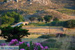 JustGreece.com Near Porto Myrina Limnos (Lemnos) | Greece Photo 20 - Foto van JustGreece.com