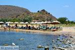 JustGreece.com Beaches Thanos Limnos (Lemnos) | Greece Photo 15 - Foto van JustGreece.com