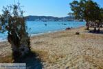 Papikinou-beach Adamas Milos | Cyclades Greece | Photo 11 - Photo JustGreece.com