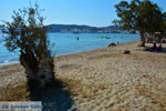 Papikinou-beach Adamas Milos | Cyclades Greece | Photo 12 - Photo JustGreece.com
