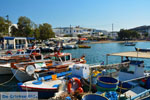 JustGreece.com Pollonia Milos | Cyclades Greece | Photo 55 - Foto van JustGreece.com