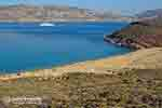 JustGreece.com Agios Sostis Mykonos - JustGreece.com photo 5 - Foto van JustGreece.com