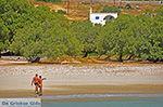 JustGreece.com Agiassos Naxos - Cyclades Greece - nr 29 - Foto van JustGreece.com