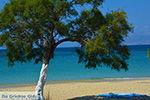 JustGreece.com Agios Prokopios Naxos - Cyclades Greece - nr 26 - Foto van JustGreece.com