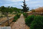 JustGreece.com Ano Sangri Naxos - Cyclades Greece- nr 8 - Foto van JustGreece.com