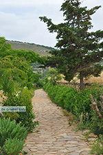 JustGreece.com Ano Sangri Naxos - Cyclades Greece- nr 16 - Foto van JustGreece.com
