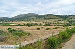 Ano Sangri Naxos - Cyclades Greece- nr 22 - Photo JustGreece.com