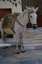 JustGreece.com Apiranthos Naxos - Cyclades Greece- nr 10 - Foto van JustGreece.com