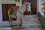 JustGreece.com Apiranthos Naxos - Cyclades Greece- nr 11 - Foto van JustGreece.com