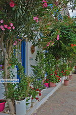 Apollonas Naxos - Cyclades Greece- nr 17 - Photo JustGreece.com