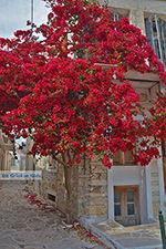 JustGreece.com Chalkio Naxos - Cyclades Greece- nr 9 - Foto van JustGreece.com