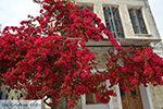 Chalkio Naxos - Cyclades Greece- nr 10 - Photo JustGreece.com