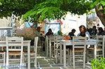 JustGreece.com Chalkio Naxos - Cyclades Greece- nr 19 - Foto van JustGreece.com