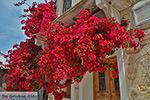 JustGreece.com Chalkio Naxos - Cyclades Greece- nr 53 - Foto van JustGreece.com