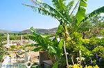 Engares Naxos - Cyclades Greece- nr 38 - Photo JustGreece.com