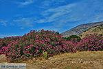 JustGreece.com Kalantos Naxos - Cyclades Greece- nr 16 - Foto van JustGreece.com