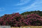 JustGreece.com Kalantos Naxos - Cyclades Greece- nr 53 - Foto van JustGreece.com