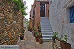 JustGreece.com Kato Sangri Naxos - Cyclades Greece- nr 5 - Foto van JustGreece.com