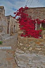 JustGreece.com Kato Sangri Naxos - Cyclades Greece- nr 12 - Foto van JustGreece.com