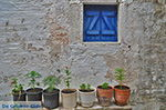 JustGreece.com Kato Sangri Naxos - Cyclades Greece- nr 24 - Foto van JustGreece.com