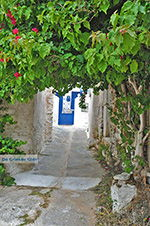 JustGreece.com Kato Sangri Naxos - Cyclades Greece- nr 43 - Foto van JustGreece.com