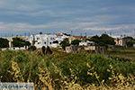 JustGreece.com Kato Sangri Naxos - Cyclades Greece- nr 55 - Foto van JustGreece.com