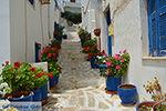 JustGreece.com Naxos town - Cyclades Greece - nr 4 - Foto van JustGreece.com