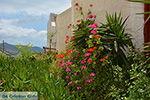 Naxos town - Cyclades Greece - nr 43 - Photo JustGreece.com