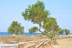 JustGreece.com Plaka Naxos - Cyclades Greece - nr 34 - Foto van JustGreece.com
