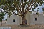 Potamia Naxos - Cyclades Greece - nr 20 - Photo JustGreece.com
