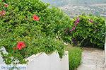 JustGreece.com Potamia Naxos - Cyclades Greece - nr 34 - Foto van JustGreece.com