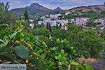 JustGreece.com Potamia Naxos - Cyclades Greece - nr 65 - Foto van JustGreece.com