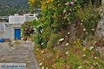 JustGreece.com Potamia Naxos - Cyclades Greece - nr 70 - Foto van JustGreece.com