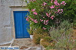 Potamia Naxos - Cyclades Greece - nr 71 - Photo JustGreece.com