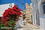Parikia Paros - Cyclades -  Photo 53 - Photo JustGreece.com