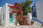 Parikia Paros - Cyclades -  Photo 73 - Photo JustGreece.com