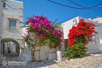 Parikia Paros - Cyclades -  Photo 50 - Foto van JustGreece.com